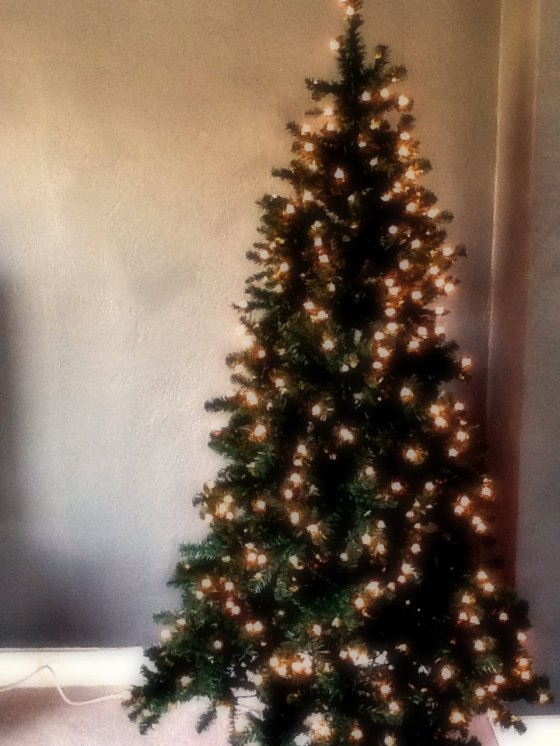 Nathan surprised me with a Christmas Tree!